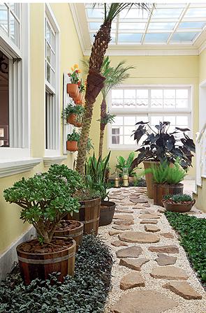 Plantas E Vasos Para O Jardim De Inverno Giacomelli Blog